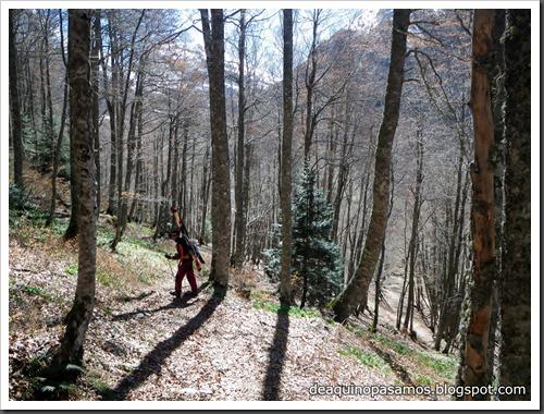 Arista NO y Descenso Cara Oeste con esquís (Pico de Arriel 2822m, Arremoulit, Pirineos) (Isra) 9487