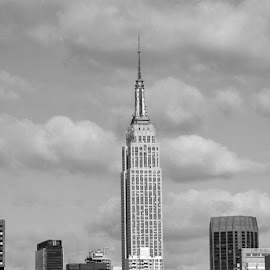 empire state building by Anthony Guerriera - Buildings & Architecture Office Buildings & Hotels ( office, landmark, building, skyscraper, city )
