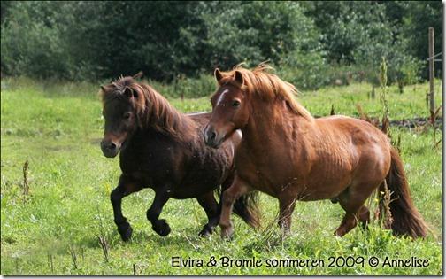 elvira-bromle-2009