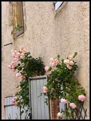 c lautrec roses 1
