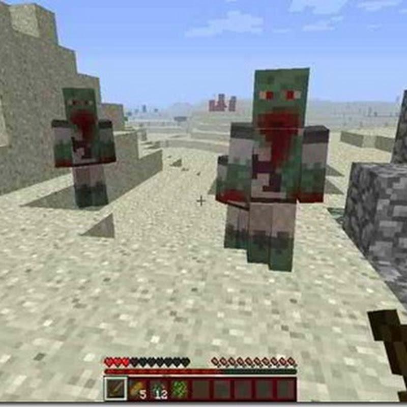 Minecraft 1.2.5 - The ZombieLand Mod
