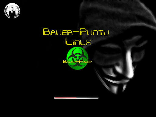 Bauer-Puntu Linux 12.04