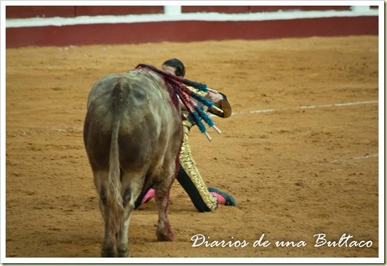 Toros_León-42