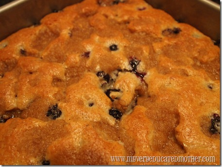 @mvemother Blueberry Coffee Cake 5