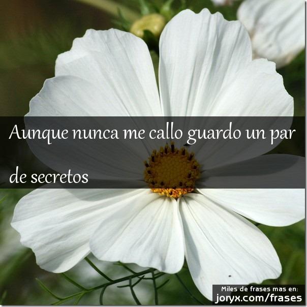 frases secretos (3)