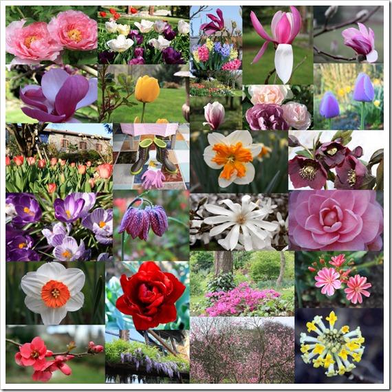 Сад весной 2011