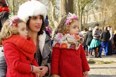 15-02-2015 Carnavalsoptocht Gemert. Foto Johan van de Laar© 024.jpg