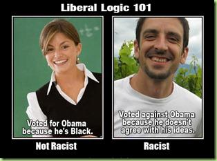 liberal_logic_101_1,_obama_cartoons