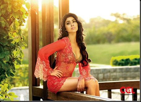 shriya saran celebrity cricket league calendar photos 2012-1