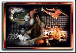 Bruce Lee-Jogo da Morte-Download