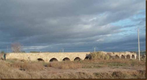Acueducto de Lodosa - Vista general