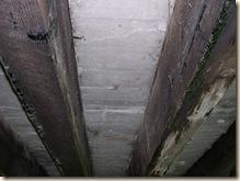 cement decking