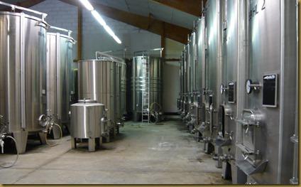 winetasting 5