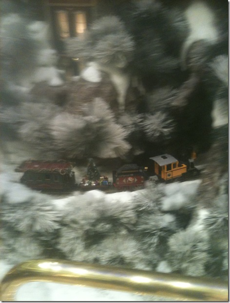 004 Train in Tree Display