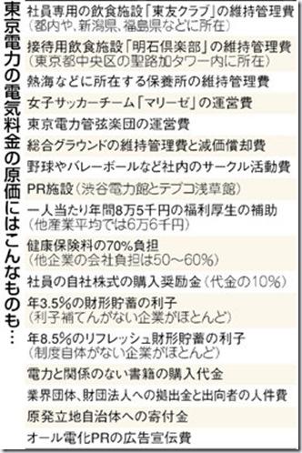 tokyodenryoku_genka