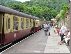 Llangollen Steam Train 003