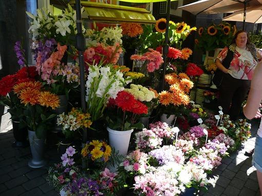 Рига, цветы