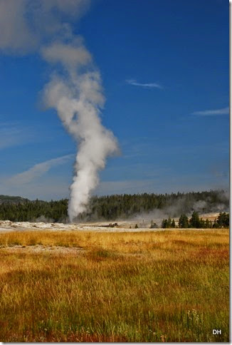 08-08-14 B Yellowstone NP (69)