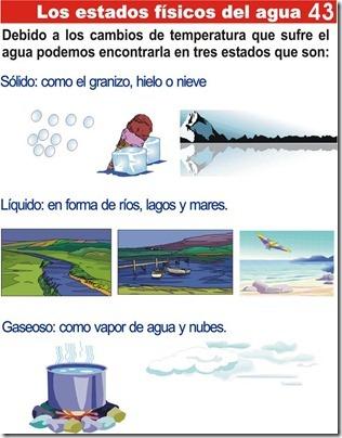 Tarea de los estados físicos del agua para niños de primaria
