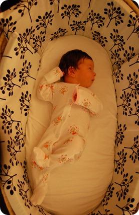 Scarlett's arrival 013