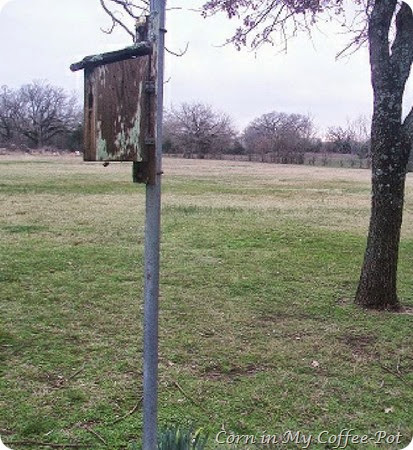 back pasture -bird house