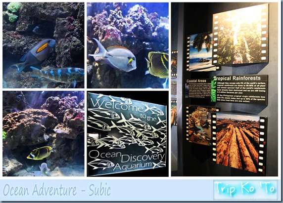 Ocean Adventure 01