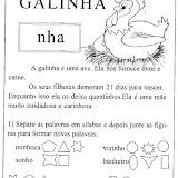 galinha_gif.jpg