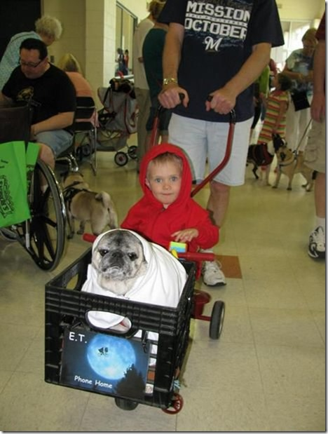 awesome-pet-owners-17