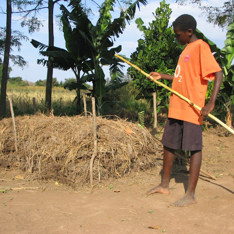 Olinga checks to see if their compost is ready. This feeds the plants and helps the soil hold more moisture.