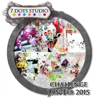 challenge-jan-7DS-600x600