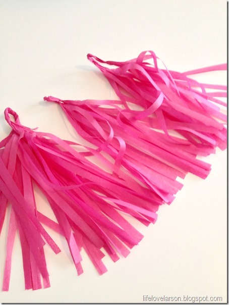 tassel 6