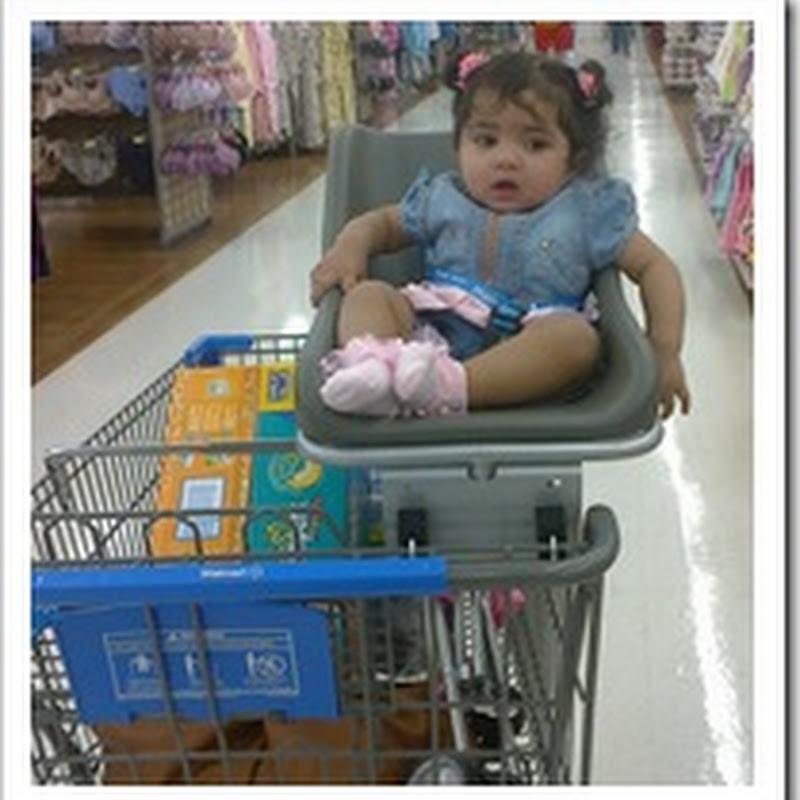 The Shopping Companion
