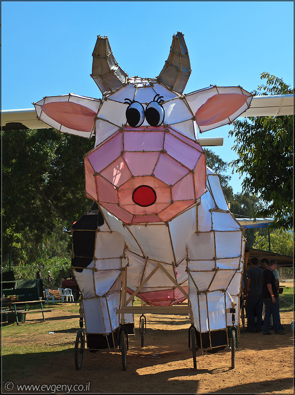 il/RedBull FlugTag 2011 в Тель Авиве   Часть вторая (20110603 ta redbull 163 5083)