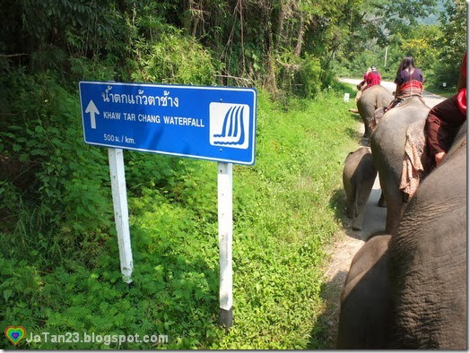 things-to-do-in-chiang-mai-patara-elephant-farm-waterfall