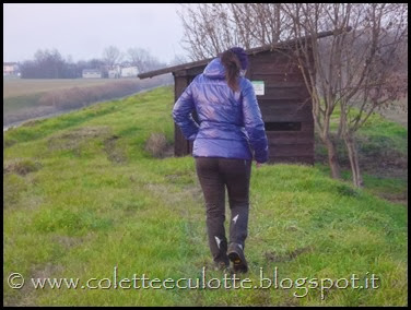 Passeggiata al Dosolo - 1 gennaio 2013 (31)