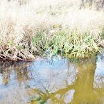 2012_11_25_Niedziela_z_ciekawostka_25.jpg