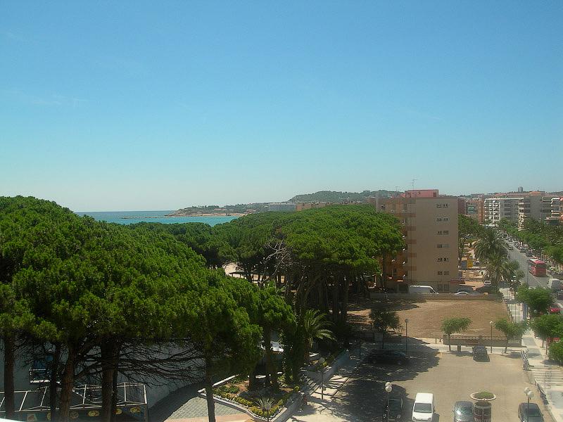 Hotel Terramarina (ex. Carabela Roc). La Pineda. Costa Dorada. Spain. Отели встроены между сосен, зачастую сосны растут прямо через столовую.