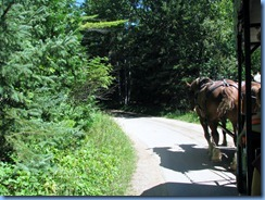 3342 Michigan Mackinac Island - Carriage Tours