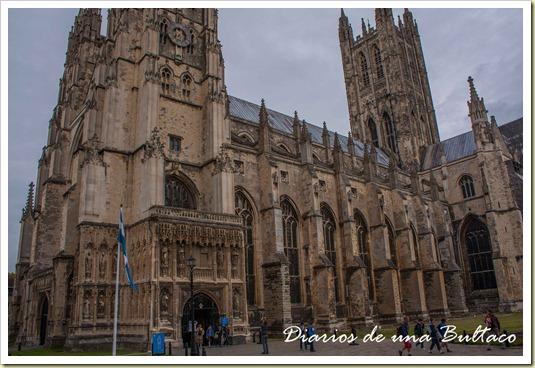 Canterbury-43