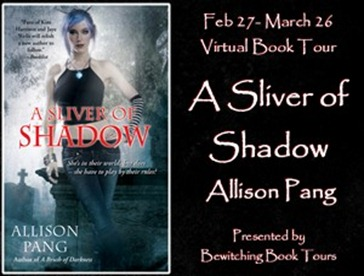 Sliver Shadow Button