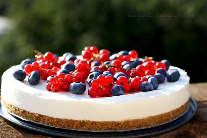 Cheesecake cu iaurt si fructe de padure 3wtr