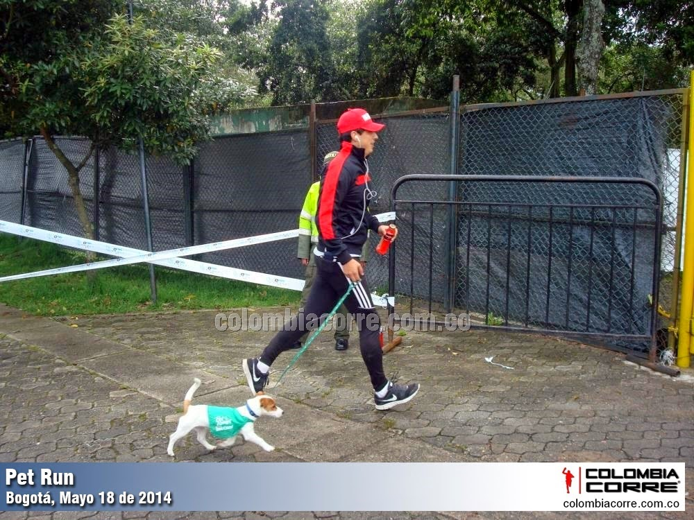 pet run bogota 2014