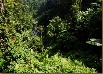 Bali D2 036