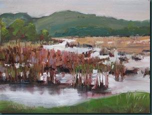 Lloyd Lake Wetlands