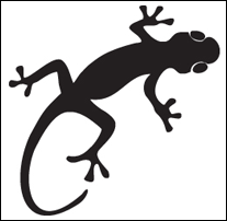 Free-Gecko-Wall-Decal1