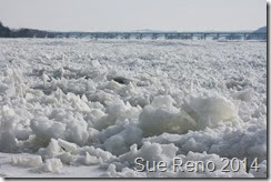 Ice on the Susquehanna River, 2/2014, by Sue Reno, Image 8
