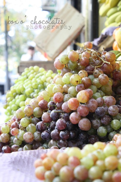 Argentinian Grapes 2