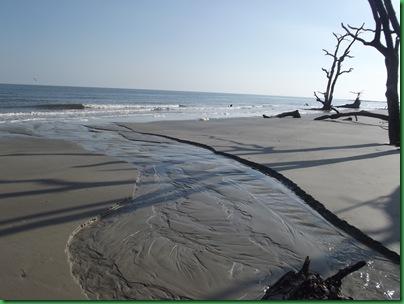 Ocean front walk 129