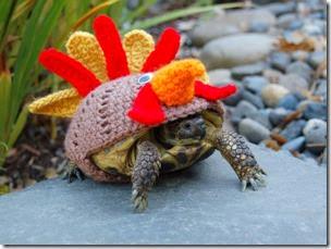 cosasdivertidas tortugas con ganchillo (16)
