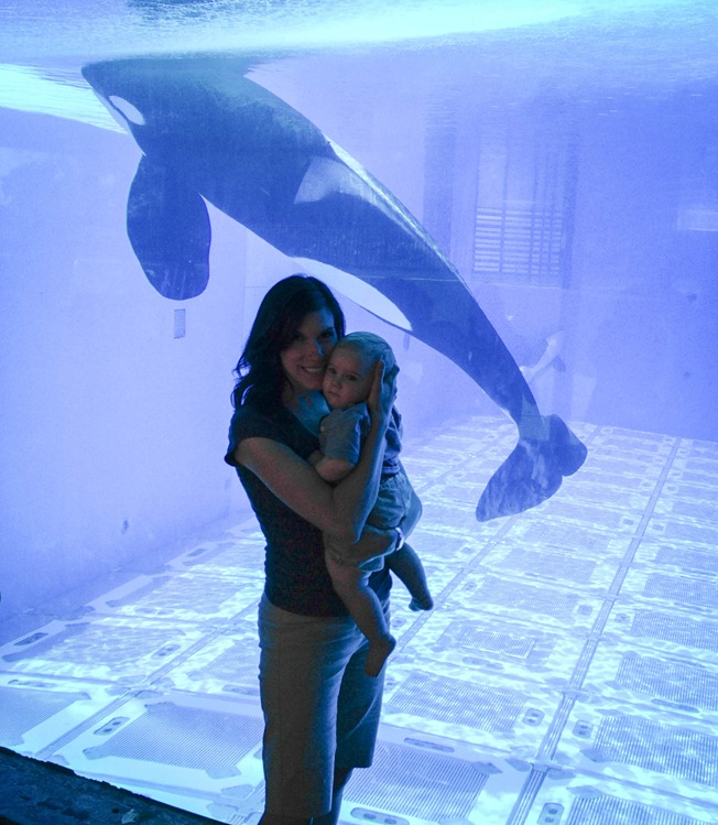 12 - first time at sea world